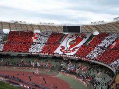 #Documental Una meravigliosa stagione fallimentare #serieA #calcio #futbol