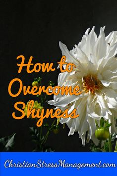 How to overcome shyness Christian Living, Christian Life, Scriptures, Bible Verses, How To Overcome Shyness, Types Of Stress, Inspirational Blogs, Let God, Jesus Loves You