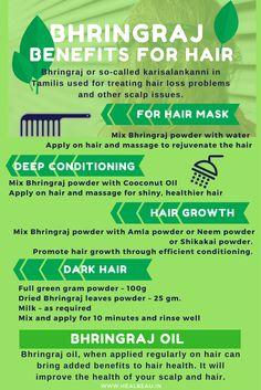Bhringraj Benefits for Hair Hair Care Bhringraj Vorteile für das Haar Natural Hair Growth Tips, Natural Hair Regimen, Hair Remedies For Growth, Hair Loss Remedies, Hair Growth Oil, Natural Hair Styles, Acne Remedies, Ayurveda Hair Care, Herbs For Hair