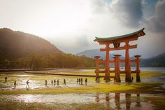 Miyajima, Awesome Stuff, Big Ben, Stuff To Do, Fishing, Japan, Island, Building, Places