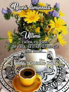 Good Morning, Plants, Summer, Beauty, Buen Dia, Summer Time, Bonjour, Plant, Beauty Illustration