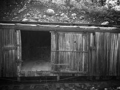 Old abandoned train cart