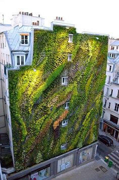 This living wall provides a sense of movement and flow on the wall.[Original:Revealing A Stunning Living Wall: Patrick Blanc's Work for Paris Design Week]