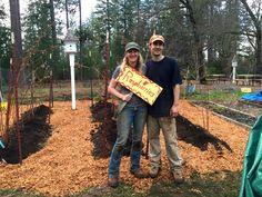 planted the raspberry hugelkulur beds