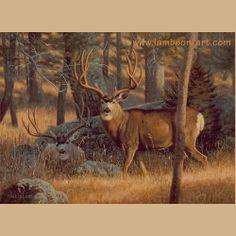 Bachelor Pad by Dallen Lambson #mule #deer #wildlife #art