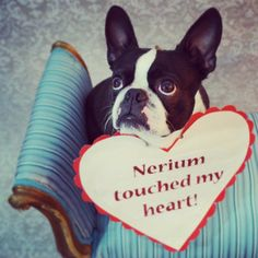 Find out why Nerium AD, are-defying treatment is so unique! visit: marangeline24.nerium.com