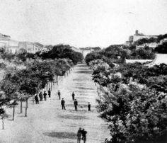 Avª da Liberdade em 1880  Aqui ainda sem Louis Vuitton :)