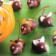 So cute... It looks like the ears all you need are pumpkin seeds, Hershey Kisses, and Lindor Truffles!!  Perfect for Halloween!!