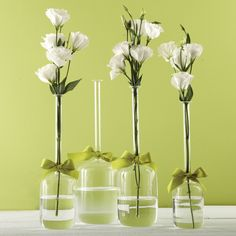 Two's Company Sleek And Chic Set of 4 Jug Vases with Sage Green Ribbon Includes 4 Sizes - Hand-Blown Glass – Modish Store