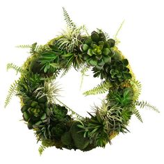 Add a verdant touch to any space with this faux aloe and echeveria wreath, brimming with botanical style. It brings a chic contrast to rustic decor, or adds ...