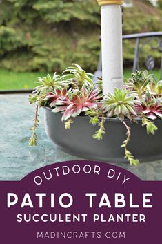 Succulent planter for your patio table! Planter Table, Patio Table, Planters, Glass Terrarium, Succulent Terrarium, Craft Tutorials, Diy Projects, Hanging Succulents, Gnome House