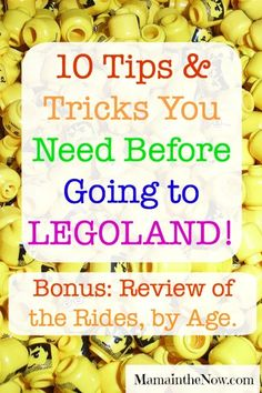 Ten Tips and Tricks to Make Your LEGOLAND Visit Awesome! Legoland Florida, By Plane, Vacation Trips, Family Vacations, Free Things To Do, Happy Summer, Activities To Do, Happy Family, Travel Couple