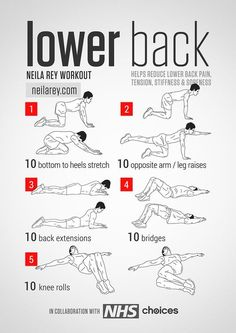 Lower Back Workout / Helps reduce lower back pain, tension, stiffness & soreness. #fitness #workout #lowerbackpain: