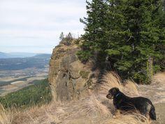 Chili the Hiking Dog Paw2: Cliff Walk