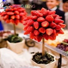 11.11 Promotions Direct Selling 100pcs Strawberry Seeds Indoor Plants Tree Rare Seed Fruit Seeds Home Garden Diy For Bonsai Gift(China (Mainland))