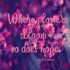 #flower #hope #pink