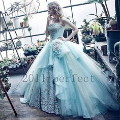 Princess Wedding Dresses Sky Blue Custom Made Strapless Appliques Bridal Gowns
