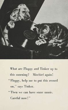 Floppy and Tinker play a record