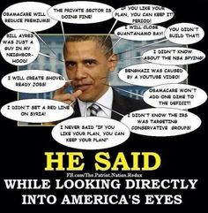 """Obamanure...everything you DON""""T EVER want in a United States President."""