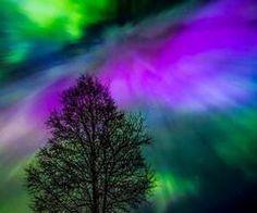 beatriz aurora