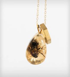 Honeycomb & Real Bee Necklace {Each bee encased in a resin teardrop was collected from a beekeeper in NYC and died of natural causes.}