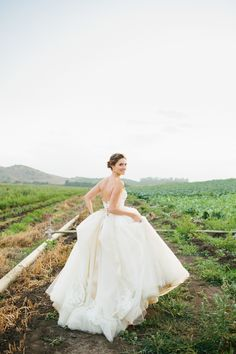 Bride - Dress=PERFECTION! Wearing Lazaro StyleLZ3251 In Buttercup  - http://www.StyleMePretty.com/2014/03/20/fiesta-wedding-at-maravilla-gardens/ Marianne Wilson Photography on #SMP