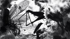 Engrossing Short Film Features Dancing Swarms Of Animated Dead Insects | Click through for video.