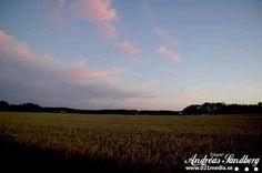 Solnedgången vid Åkersta