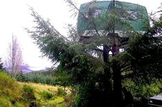 Fancy staying in a 1960s caravan-treehouse, a 110-year-old lifeboat, or a military pod called Boris?