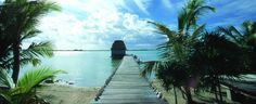 Belize has it all. Imagine yourself in a place where mountains draped in lush jungle; richly exotic wildlife (birds, butterflies, big cats and more); sugar-white beaches, pristine offshore cayes and sapphire blue waters that shelter one of the world's most diverse marine ecosystems….and offer excellent diving, snorkelling and fishing.