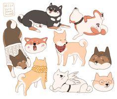 "Animal Drawings hamotzi: ""more shibas! Cute Animal Drawings, Cute Drawings, Cute Dog Drawing, Dog Illustration, Character Illustration, Animal Illustrations, Art Mignon, Shiba Puppy, Shiba Inu"