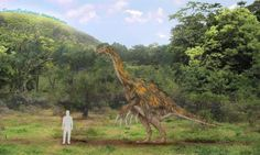 How Much Do You Know About Therizinosaurus?: Therizinosaurus May Have Weighed as Much as Five Tons