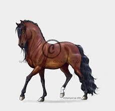 Bildergebnis für pferde anime