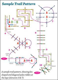 Trail Pattern We could do that easy if we were 10 yrs old. Brandy is 22, now and retired.
