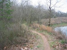 Pumping Station Mountain Bike Trail in Augusta, Georgia || SINGLETRACKS.COM
