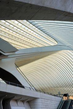 Station Liège, by Santiago Calatrava, 2009, photo by Peter Westerhof
