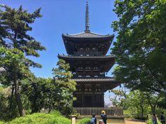 Beautiful Sankeien Gardens in Kanagawa (Yokohama) Kanagawa Prefecture, Autumn Lights, Kanazawa, Most Beautiful Gardens, Yokohama, Big Ben, Tokyo, Tourism, Japan