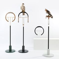 Fancy - Falconry perches by Posa