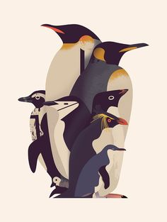 Owen Davey On The Powerful Medium Illustration And Avoiding Soul Destr - gestalten Read his story and what encouragement he offers to other creatives via gstl. Penguin Day, Penguin Love, Cute Penguins, Happy Penguin, King Penguin, Emperor Penguin, Pinguin Illustration, Illustration Art, Charley Harper