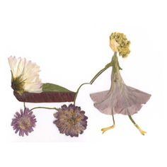 Pressed Flower Designs | Pressed flower design baby greeting card by DesignsInFloral