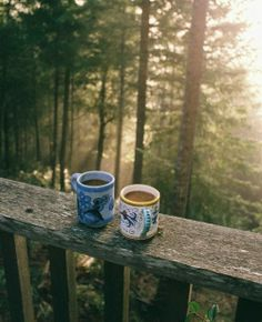 ☺ Relaxation in Nature with Loving Company and a Hot Cup of Coffee - Priceless - www.Lifecoachcode.com