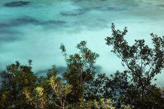 Photos/vidéos - Little Green Bay