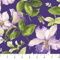 20037-86 Purple Passion Fabric by Northcott.com released Spring 2013