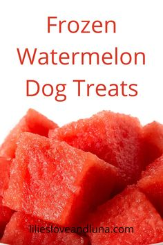 Easy to make frozen watermelon dog treas uses only 1 ingredient. Frozen Dog Treats, Frozen Watermelon, Dog Treat Recipes, Dogs, Pet Dogs, Doggies