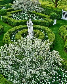 Carolyne Roehm | In the boxwood parterre at the rear of the house, Sargentina crabapple trees froth above geometric beds of white tulips.