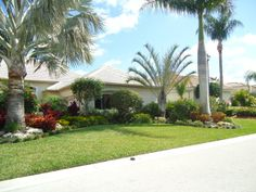 Tropical landscaping for a front yard in south Florida.