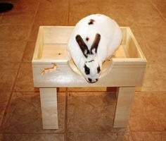 Bunny Rabbit Tower Bed by BunnyRabbitToys on Etsy, $48.00