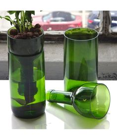 Self-watering recycled wine bottle planter