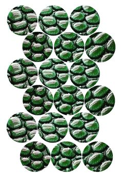 "Green Scales Bottle cap image pack Formatted for printing on 4"" x 6"" photo paper"