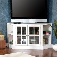 Corner tv stand. Have to get exact measurements but something like this with glass fronts and maybe closed sides for DVDs?.